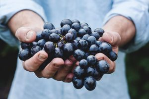 Las uvas como alimento saludable de otoño
